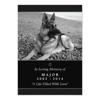 "Pet Memorial Card 5""x7"" Black Modern - Male Pet"