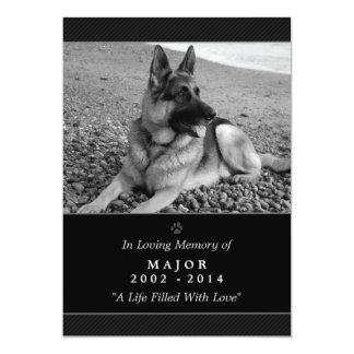 "Pet Memorial Card 5""x7"" Black Modern - Male Pet"