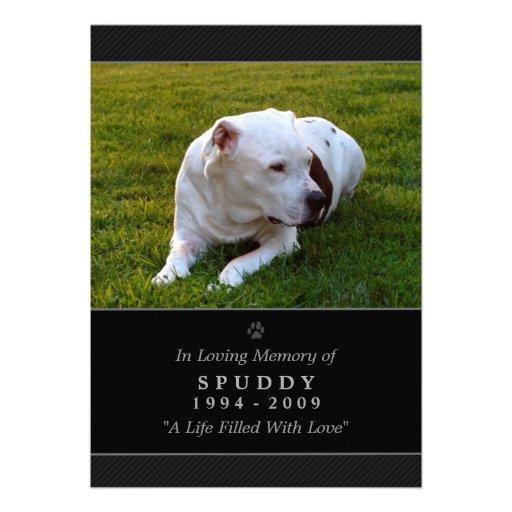 "Pet Memorial Card 5""x7"" Black Modern Photo"