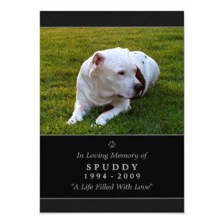 "Pet Memorial Card 5""x7"" Black Modern Photo Invitations"