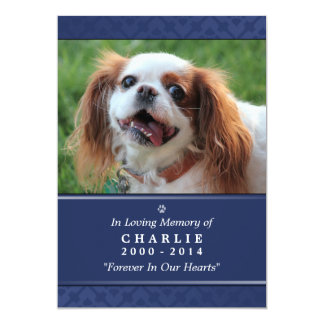 "Pet Memorial Card 5""x7"" Navy Blue - for Male Pet"