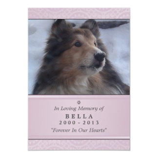 "Pet Memorial Card 5""x7"" Pink Modern - Female Pet"