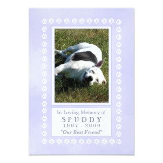 Pet Memorial Card 5x7 - Heavenly Blue Pawprints