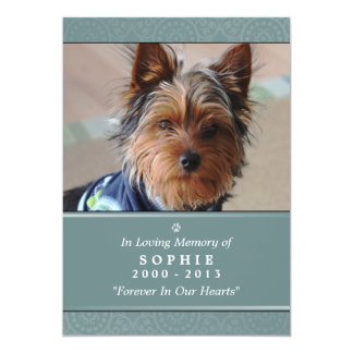 Pet Memorial Card 5x7 Teal Prayer for Pets