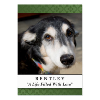 Pet Memorial Card Forest Green - Contented Poem