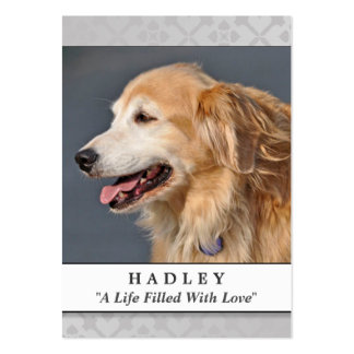 Pet Memorial Card Light Gray Modern Prayer for Pet Large Business Cards (Pack Of 100)