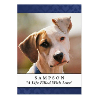 Pet Memorial Card Navy Blue - Contented Poem Large Business Cards (Pack Of 100)