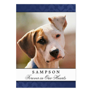 Pet Memorial Card Navy Blue Modern Prayer for Pet Large Business Cards (Pack Of 100)