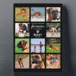 "Pet Memorial Gift | In Loving Memory Photo Plaque<br><div class=""desc"">Personalized pet memorial photo plaque featuring 11 photos of your beloved animal,  a sweet saying,  their name and the dates.</div>"