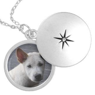 Pet Memorial Locket - Silver Plated