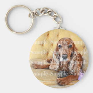 Pet memorial memory / PERSONALIZE photo Basic Round Button Keychain