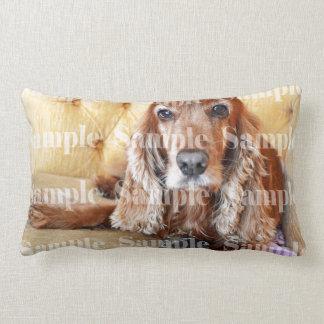 Pet memorial memory / PERSONALIZE photo Pillow