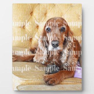 Pet memorial memory / PERSONALIZE photo Plaque