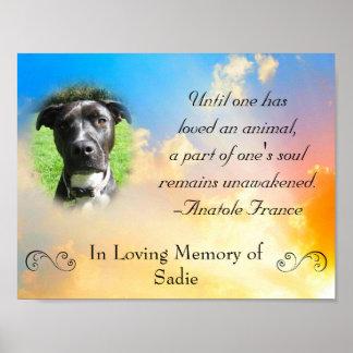 Pet Memorial - Pet Loss Quote Poster