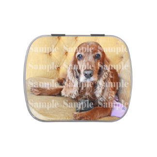 Pet memorial photo PERSONALIZE Jelly Belly Tin
