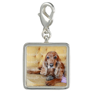 Pet memorial photo PERSONALIZE Photo Charms