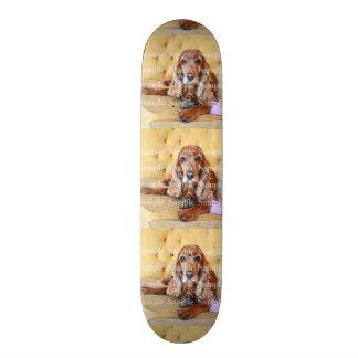 Pet memorial photo PERSONALIZE Skateboard