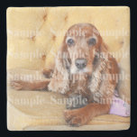 "Pet memorial photo PERSONALIZE Stone Coaster<br><div class=""desc"">If you,  a family member or close friend have lost a cherished pet or have a new one then this fully customizable stone coasters is the ideal keepsake. CUSTOMIZE IT - Replace the custom photo template with one of your beautiful animal and keep their memories close to you</div>"
