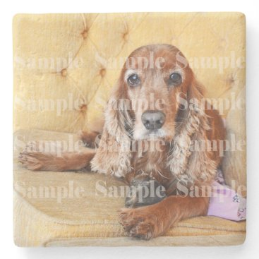 new,or,pet Pet memorial photo PERSONALIZE Stone Coaster