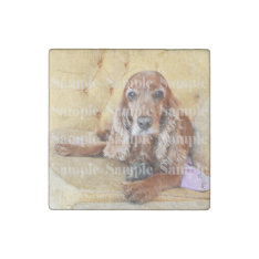 Pet Memorial Photo Personalize Stone Magnet at Zazzle