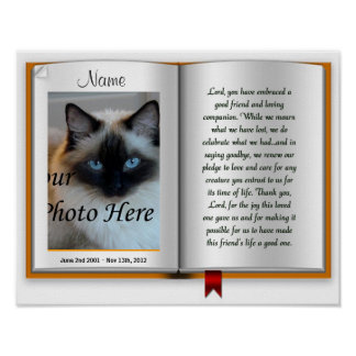 Pet Memorial Postal Print - Religious - Cat Dog