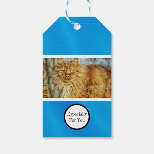 Pet memorial sympathy  Personalize photo Gift Tags