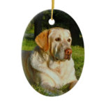 pet-memorial, pet-christmas-ornament,