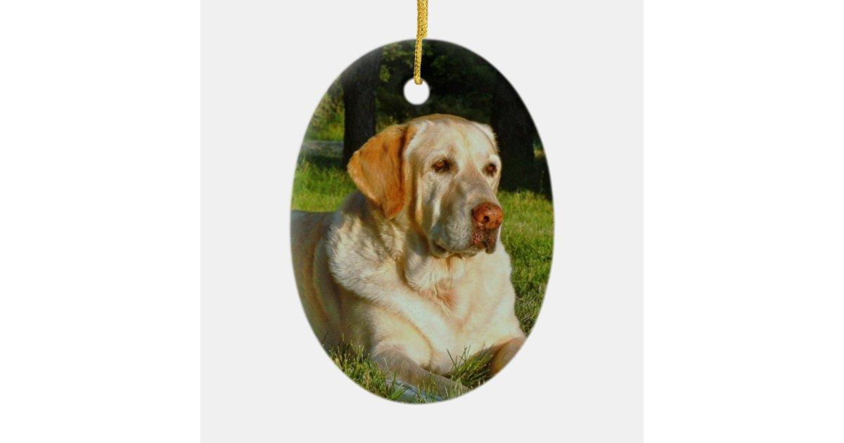 Pet Memory Ornament Make Your Own Zazzle Com