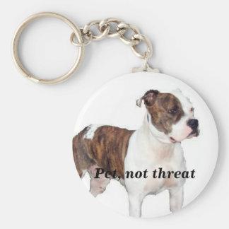 Pet, not threat keychain