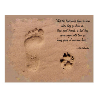 Pet & Owner Prints in the Sand Postcard