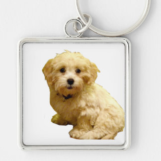 Pet Owners Keychain