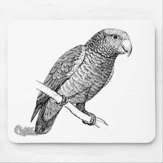 Pet Parrot Bird Art Mouse Pad