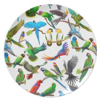 Pet Parrot Lovers Plate