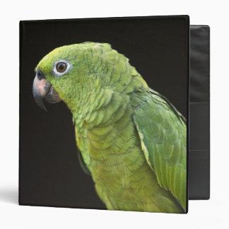 Pet parrot Macushi people Yupukari village Vinyl Binders