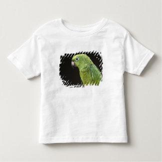 Pet parrot Macushi people Yupukari village Toddler T-shirt