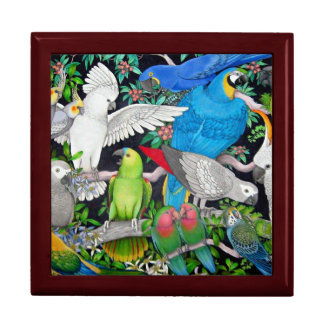 Pet Parrots of the World Gift Box