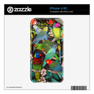 Pet Parrots of the World II Zazzle Skin Skin For iPhone 4