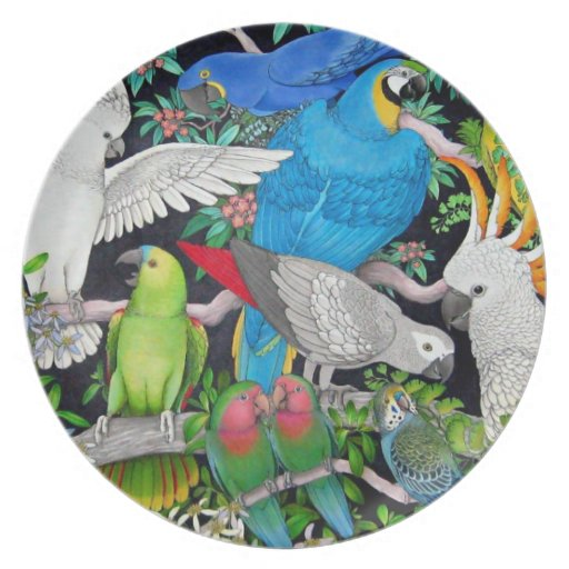 Pet Parrots of the World Plate