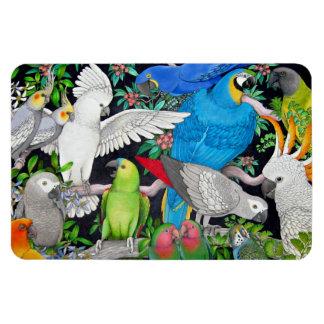 Pet Parrots of the World Premium Magnet