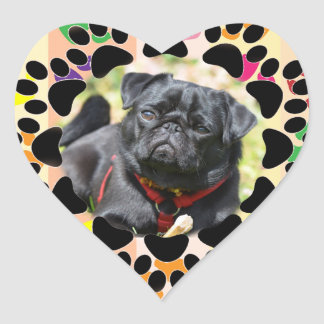 Pet Paw Frame on Paws Heart Sticker
