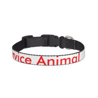 Pet Pet Collar