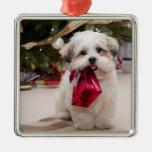 Pet Photo Christmas Ornament