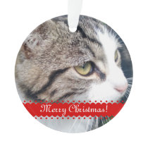 Pet photo Christmas ornament   Upload your images