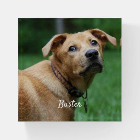 Pet Photo Custom Paperweight
