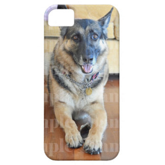 Pet photo dogs cats PERSONALIZE iPhone SE/5/5s Case
