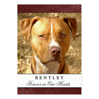 Pet Photo Memorial Card Maroon Red Prayer for Pets Large Business Cards (Pack Of 100)
