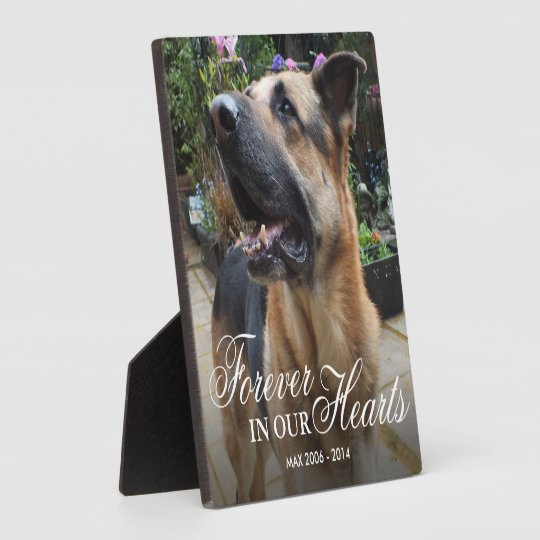 Pet Photo Memorial Gift   Forever in our Hearts Plaque