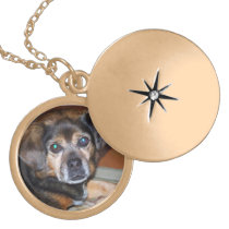 Pet Photo Memory Locket Gold Finish