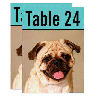 Pet Photo Table Number Cards | Custom Template