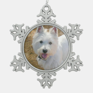 Pet Photo Template Pewter Christmas Tree Ornament at Zazzle